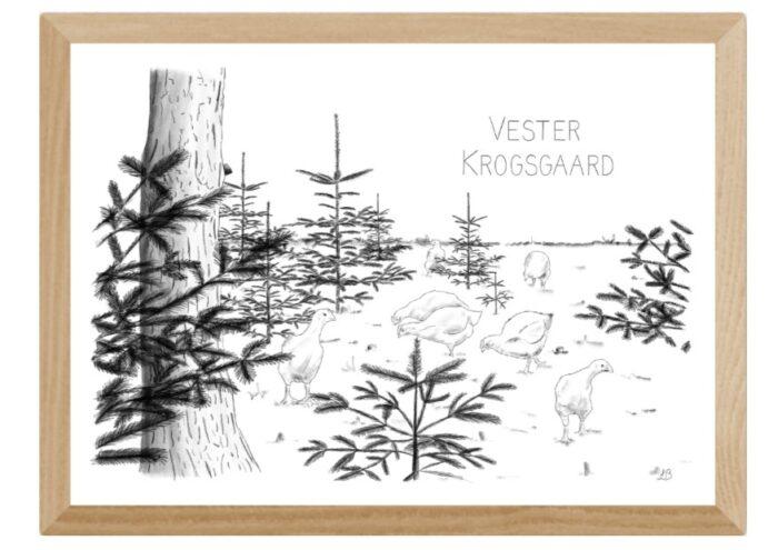 Varebillede Vester Krogsgaard plakat - håndtegnet af Kreative Lise