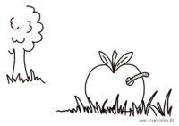 Æble med orm - gratis malebogstegninger - Kreative Lise
